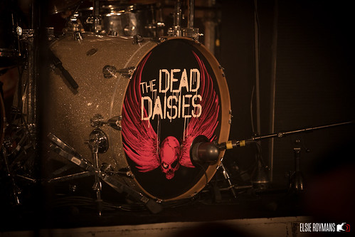 THE DEAD DAISIES @ BIEBOB 17042018