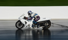 Pro Stock Suzuki_8233 (Fast an' Bulbous) Tags: drag race track bike biker motorcycle motorsport fast speed power acceleration santapod