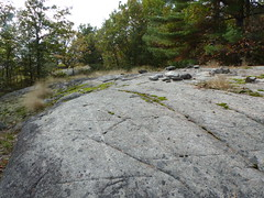 Granite Outcropping (geodeos) Tags: sheffieldconservationarea canadianshield granite rock stone moss grass lichen forest tree scenery nature