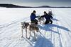 Husky safari on Lake Menesjarvi (Hotel Korpikartano) Tags: korpikartanofi menesjarvi inarilapland husky sleddog