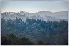 Bosques de Sintra (Totugj) Tags: nikon d5100 bosques sierras montañas sintra portugal