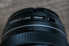 "Yongnuo 100mm F2N • <a style=""font-size:0.8em;"" href=""http://www.flickr.com/photos/58574596@N06/40947279502/"" target=""_blank"">View on Flickr</a>"