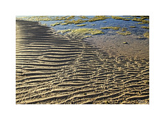 ... (ángel mateo) Tags: ángelmartínmateo ángelmateo cádiz andalucía españa playa lacaleta andalusia spain mar arena textura mareabaja bajamar sea sand beach texture lowtide tide