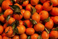 Valencia, Spain         5115 (deanwgd608) Tags: canoneos5dmark2 canonef24105mmf4lisusm orange fruit color citrus