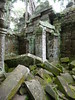Puzzle Pieces (Toats Master) Tags: siemreap angkor ancient historic ruins jungle green cambodia