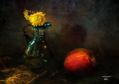 """still (G.LAI(on and off ,)) Tags: life painting vast dry flower roses decoration conon mark3 5d 静物 peony, pink ,decoration red oil paint canon creative watercolor grapse orange。 ,艺术, 摄影。, ceramic embroidery """"stilllife"""" """" still life"""""""