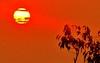 Sol Estriado/Striated Sun (jerodamor@yahoo.com.mx) Tags: sol ocasosdetorreón ocasos torreóncoahuila méxico