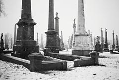 R1-073-35 (David Swift Photography) Tags: davidswiftphotography philadelphia westphiladelphia cemeteries graveyards monuments tombstone graves 35mm olympusstylusepic ilfordxp2 film snow snowstorm snowinacemetery