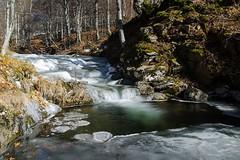 Petites cascades (lyli12) Tags: cascade ice glace froid hiver cold aveyron aubrac nature ruisseau midipyrénées eau water poselongue nikon d7000 france