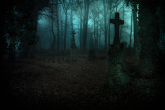Old Cemetery in Lodz (Tomasz Aulich) Tags: cemetery old rust rustic lodz europe poland plant tree autumn blue dark darkness cross crucifix tomb shadows light nikon sigmalens sky fog ghotic mystic abandoned decay green colour naturallight travel urban city
