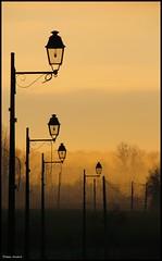 Mareil sur Loir (Sarthe) (gondardphilippe) Tags: mareilsurloir sarthe maine paysdelaloire orange lampadaires levédesoleil aurore aube ciel sky couleurs colors extérieur rue street landscape paysage monochrome nature brume quiet rural loir zen ngc
