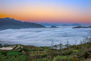 _U1H6724-0217 Sea of clouds.Sâu Chua,Sapa-Lào Cai,Việt Nam