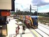 Gold Coast Light Rail. Stage 2. 17.3.2018. (TimBo's pics) Tags: gclr goldcoastlightrail goldlinq goldcoast glink theg helensvale parkwoodeast parkwood trams lightrailvehicle lrv lightrail
