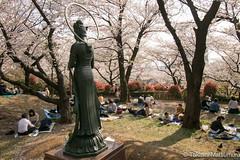 Asukayama Park (takashi_matsumura) Tags: asukayama park oji kitaku tokyo japan nikon d5300 sakura cherry blossoms 飛鳥山公園 王子 北区 東京 桜 afp dx nikkor 1020mm f4556g vr