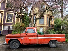 Portlandia. SE Hawthorne. April 2018 (drburtoni) Tags: