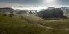 Allgäu (Martin Zurek) Tags: landschaft landscape nature germany bavaria panorama dreamscape fog sun nebel sonne allgäu ostallgäu irsee pforzen oggenried