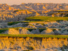 Badlands Vista Sunrise (Patti Deters) Tags: badlands sunrise geological colorful desert southdakota landscape formations terrain rugged dunes erosion usa rock nationalpark wilderness america outdoors park geology formation beautiful dry natural nature sunset unitedstates scenicview scenery outside sandstone badlandssouthdakota clay extremeterrain hills grass arid outdoor view mountains nopeople dakota badlandsnationalpark vista