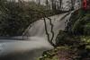 RRR02435-08 de abril de 2018 (Tres-R) Tags: lousame galicia españa es spain fervenza waterfall cascada noia water agua naturaleza nature tresr rodolforamallo sonyrx10iii