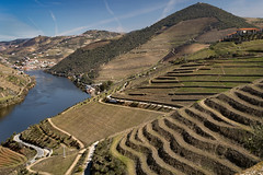 Douro valley (Leaning Ladder) Tags: tabuaco portugal pinhão douro river dourovalley landscape wine winery vineyard terrace sandeman quintadoseixo leaningladder canon 7d mkii