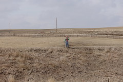 Scarecrow, along the road 3-18-18 01 (anothertom) Tags: iowa iowacounty belleplaine alongtheroad cropfield farming scarecrow dummy