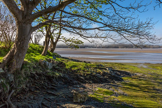 Portmeirion from Ynys 1