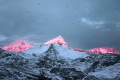 Pink Peaks by Mångata - Driving along the E10 in Lofoten at sunrise...