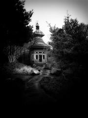 Pagoda in the Park (Bill Eiffert) Tags: olympussh2 pagoda park victorian civic gardens trees nature architecture mono