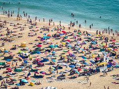 Portugal 2017-9021008-2 (myobb (David Lopes)) Tags: 2017 adobestock allrightsreserved atlanticocean europe nazare portugal aerialview beach beachumbrella copyrighted day daylight enjoyment highangleview leisureactivity ocean outdoors sand sea sunbathing tourism touristattraction traveldestination umbrella vacation watersedge ©2017davidlopes
