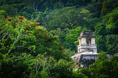 The Observation Tower (DSC6483) (DJOBurton) Tags: mexico palenque chiapas theobservationtower unesco