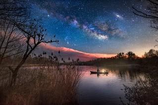 Sterne sind die Vergißmeinnicht der Engel.
