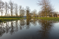 20180405_The lake in Calthorpe Park (Damien Walmsley) Tags: calthorpepark reflections water rain trees spring sky birmingham