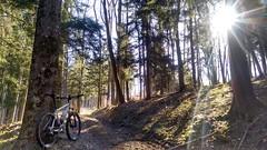 Heuberg (twinni) Tags: mw1504 07042018 bike biketour mtb mountainbike heuberg salzburg austria österreich flachgau winterradl winterbike bergziege 20
