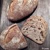 Bruin desembrood (Levine1957) Tags: brood bread desem zuurdesem sourdough
