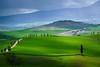 The Gladiator Road (DSC7405) (DJOBurton) Tags: tuscany italy terrapile gladiator pienza spring toscana primavera valdorcia siena cretesenesi sanquiricodorcia