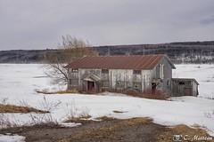 180403-23 Grange dans Bellechasse (clamato39) Tags: grange barn ciel sky neige snow hiver winter rural bellechasse provincedequébec québec canada