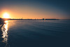 Sunset light (Maria Eklind) Tags: ribersbrgskallbadhus ribersborg sunset people sweden winter ribban bro beach ocean malmö kallbadhuset bridge hundrastplatsen dog hav sunlight strand kallis öresundbron hund skånelän sverige se