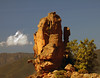 Not far... (Robyn Hooz) Tags: corse corsica france piana calanchi hoodoos pillars albero nuvola cielo holiday