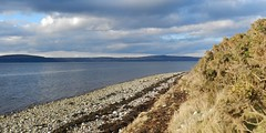 Darker Skies, Allanfearn Bay, near Inverness, Mar 2018 (allanmaciver) Tags: allanfearn alturlie moray firth scotland north highlands inverness stones sea grey clouds low gorse seaweed colder temperature allanmaciver