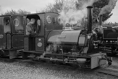 _DSC8374 (Phil Tugwell Photography) Tags: statfold barn railway march 2018