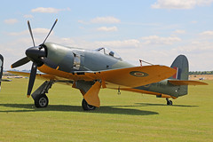 G-CBEL (SR661) Hawker Sea Fury FB11 Royal Navy Colours Duxford Flying Legends 08th July 2017 (michael_hibbins) Tags: gcbel sr661 hawker sea fury fb11 royal navy colours duxford flying legends 08th july 2017 aircraft aviation aeroplane aerospace airplane aero airshow airfields aeroexpo civil classic vintage retro prop props propeller single piston