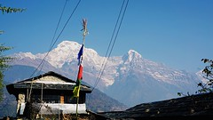 Machapuchare in the Annapurna Himalayas viewed from the Poon Hill trek (qqazwws18) Tags: sonya6000 sony travel nepal himalayas annapurna poonhill