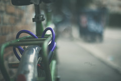Purple and green _ #38/100 Bike Project (pierfrancescacasadio) Tags: bicicletta bike marzo2018 15032018840a5539 bicycle 100bicycles project detailed details bikes cycling 100bicyclesproject 1252 lifeisarainbow green verde purple lightgreen 38 7dwf
