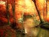 Happy mistake (angelakingjonesphotography) Tags: minnesota fall autumn seasons tree water river reflection