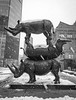 NYC _180321 _ 5091 (kevinbarry7) Tags: kmb kevinmichaelbarry photography nyc newyorkcity snow snowstorm blackandwhite weather city street rhino wildlife sculpture awareness statue astor place