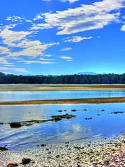 Very low tide III (elphweb) Tags: ocean sea water creek seaside tidal hdr highdynamicrange nsw australia coastal coast bay