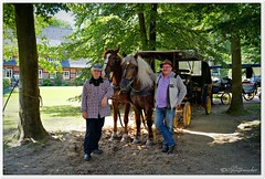 Unter Freunden (Don111 Spangemacher) Tags: kutsche kutschfahrt dorf park pflanzen pferde kutscher wald wege reisen romantik fachwerk heidekreis heide lüneburgerheide niedersachsen natur naturschutzgebiet naturpark norddeutschland niederhaverbeck sandwege urlaub