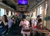 transport - train journey in Vietnam (Amanda Lane 2020) Tags: train journeys travelling abroad everyone ensconced ownprivateworld life aboard hanoi vietnam