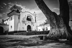Hacienda Huando - Huaral (cesarcuadros86) Tags: hacienda antiguo blanco y negro bn casona iglesia arbol cielo