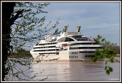Le SOLEAL arrive en escale à BORDEAUX. (Les photos de LN) Tags: soleal navire croisière bordeaux port portdelalune aquitaine estuaire vacances loisirs garonne
