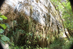 IMG_3623 (Egypt Aimeé) Tags: narrows zion national park canyons pueblos utah arizona